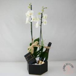 Orchidée avec sa bouteille de Champagne