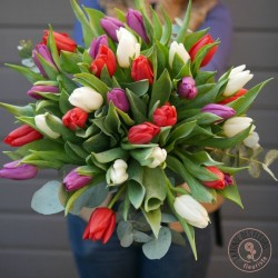 love tulipes