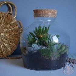 terrarium jurassic