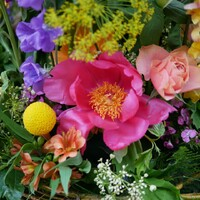 Le printemps est bien là avec ses pivoines et fleurs colorées!  #rennes #fleuristerennes #fleuriste #larondedesfleurs_rennes #bretagne #fleursbretagne #colorblock #couleurs #soleil #bouquetcoloré #pivoines #printemps #soleil